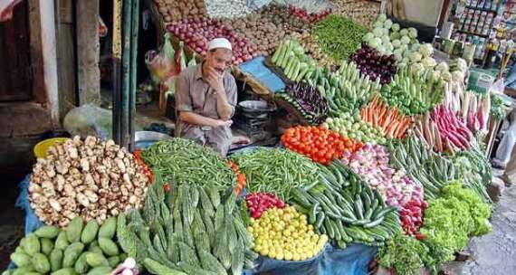 It is believed that the vegetable crops damaged in the war against terror will take a few months to recover, while fruit orchards and farms completely destroyed would take at least 2-4 years to come into normal production. – File photo